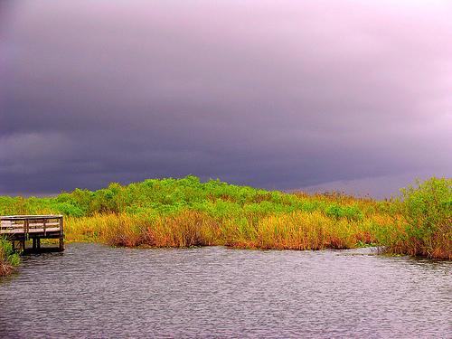 everglades-parque-florida-vista.jpg